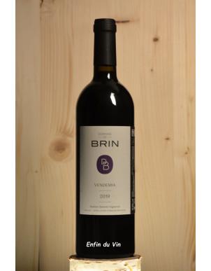 Vendemia 2019 Gaillac Domaine de Brin Sud Ouest Duras Merlot vin rouge biologique