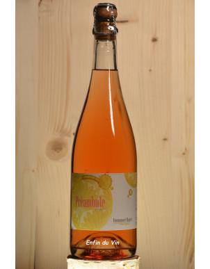 preambule pétillant naturel rosé domaine haget val de loire pineau d'aunis cabernet-franc vin effervescent bio
