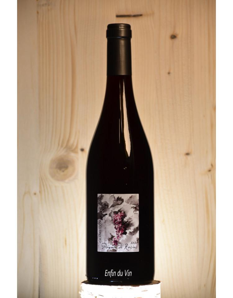 poignée de raisin 2020 côtes du rhône domaine gramenon grenache noir vin rouge biologique biodynamique naturel rhône