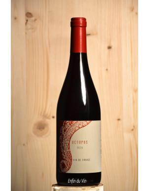 octopus 2020 vin de france l'austral val de loire groslot cabernet franc vin rouge bio
