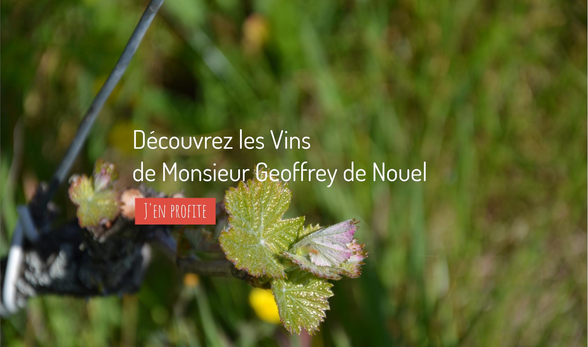 Geoffrey de Nouel